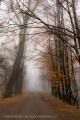Mgła w Legnicy