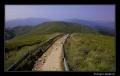 czerwony szlak z Ustrzyk Górnych na Tarnicę