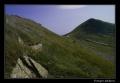 Przełęcz pod Tarnicą
