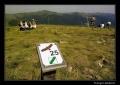 ścieżka przyrodnicza na Tarnicę