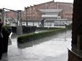 Widok na filharmonię w deszczu