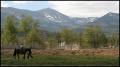 spacery na koniu z widokiem na Śnieżkę